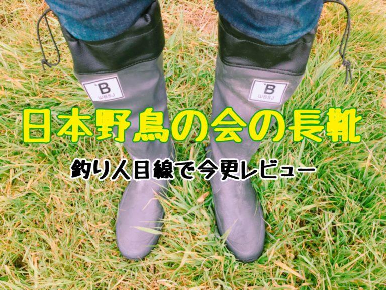 会 の 日本 野鳥 インターネットショップ Wild