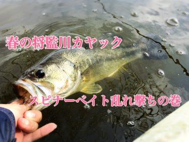 【春の将監川バス釣り】カヤックで出撃、スピナーベイトを巻き倒して釣果2本。