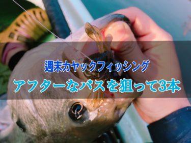 【釣行】5月末、アフタースポーンを狙う釣り。ステルスペッパーやフィンク3.7が好調。