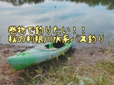 【カヤック釣行】秋の利根川水系をハネモノやスピナベ、クランクベイトで釣る