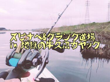 【釣行】2021年春、牛久沼でスピナベとクランクベイトを投げ散らかして1本